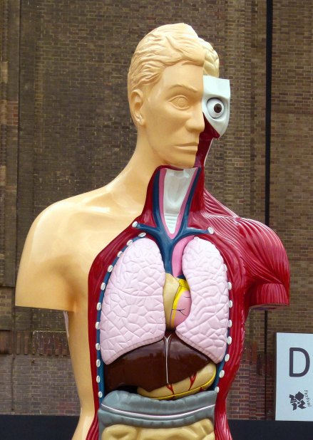 'Hymn' by Damien Hirst, exhibited outside the Tate Modern in 2012.