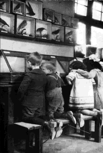 City kids enjoying the Nature Museum's exhibits (image: copyright Tower Hamlets Local History Library & Archive.