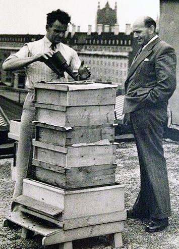 One of Waterloo's bee hives.