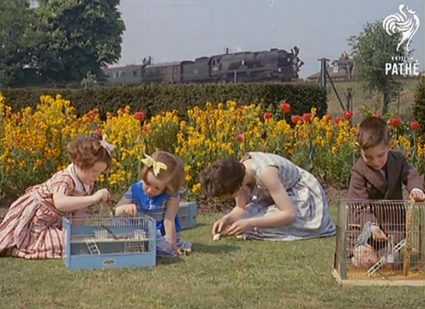 Youngsters at the Southern Railway Children's Home in Woking, 1960 (image: Pathe)
