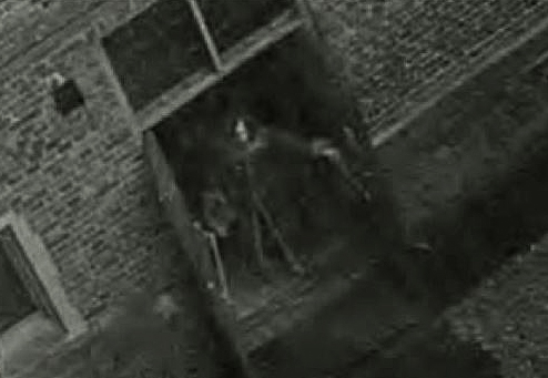 'Skeletor', Hampton Court, 2003