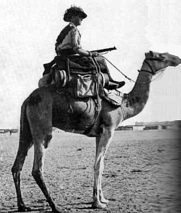 An Australian soldier with his loaded camel