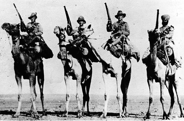 Band of Brothers: Imperial Camel Corps troops from Britain, New Zealand, Australia and India