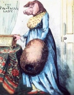 the-pig-faced-lady